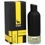 ARM STAG  By Armaf For Men - 3.4 EDT SPRAY
